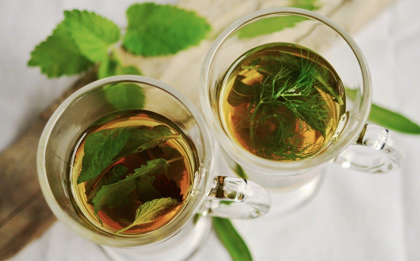 Clasificación del té