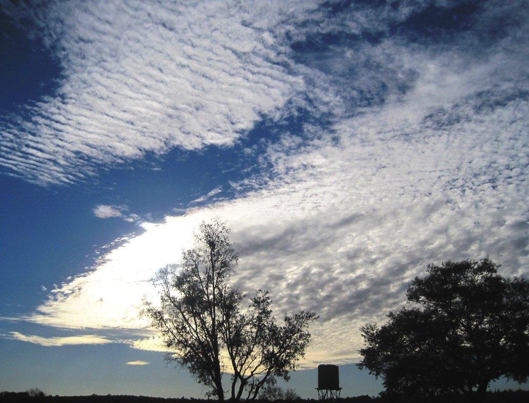 Nube del tipo estrato