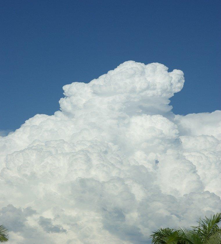 Nube del tipo nimbo